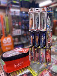 coleccion dtd 2.0 eging pack